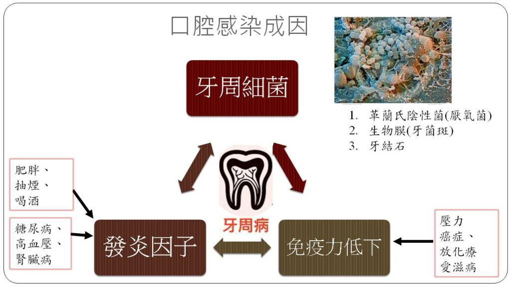 圖1 口腔黏膜炎的致病要素