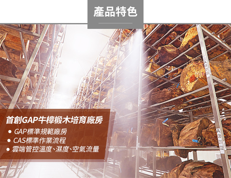 GAP 牛樟椴木培育法