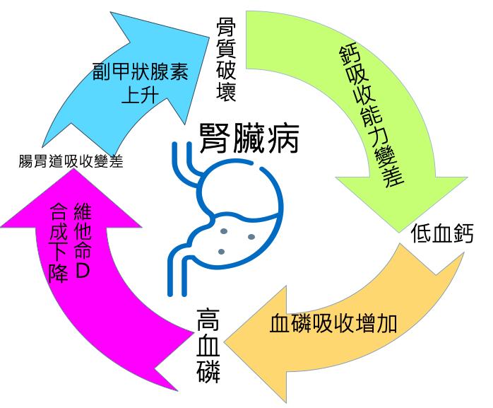 腎臟病引起低磷高鈣說明